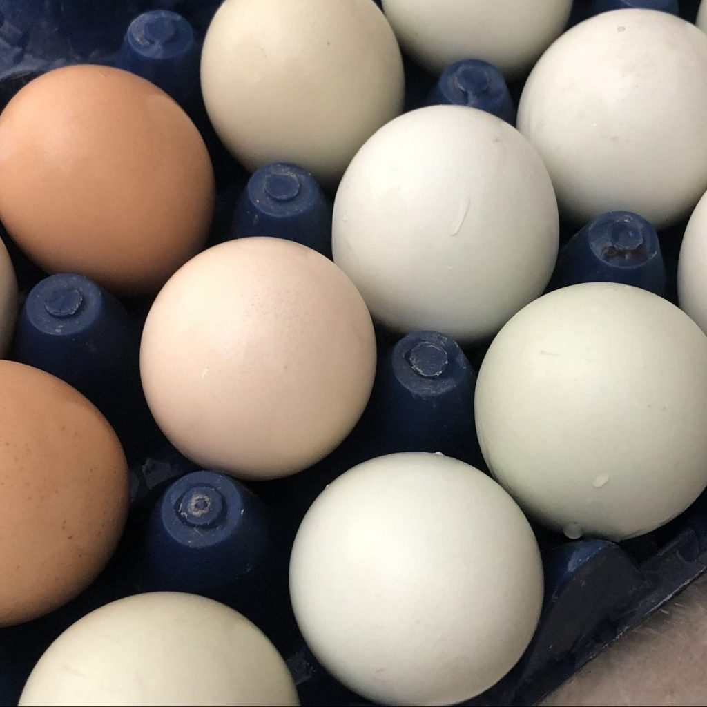 Ashmore Acres Eggs Free Range