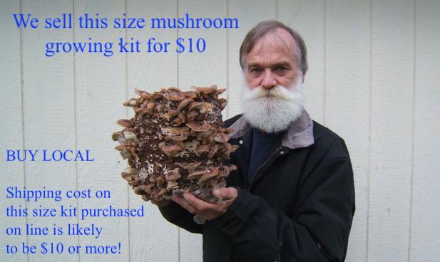 Lowell holding $10 mushroom growing kit.