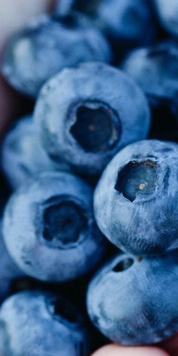 Handful of organic blueberries!