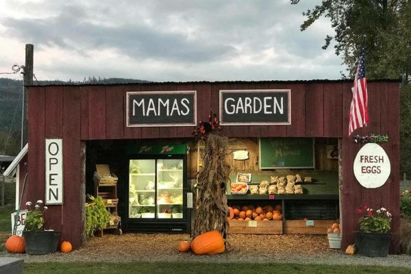 Mama's Garden_Deming